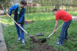 Základná škola kniežaťa Pribinu, Nitra - Poklady školskej záhrady